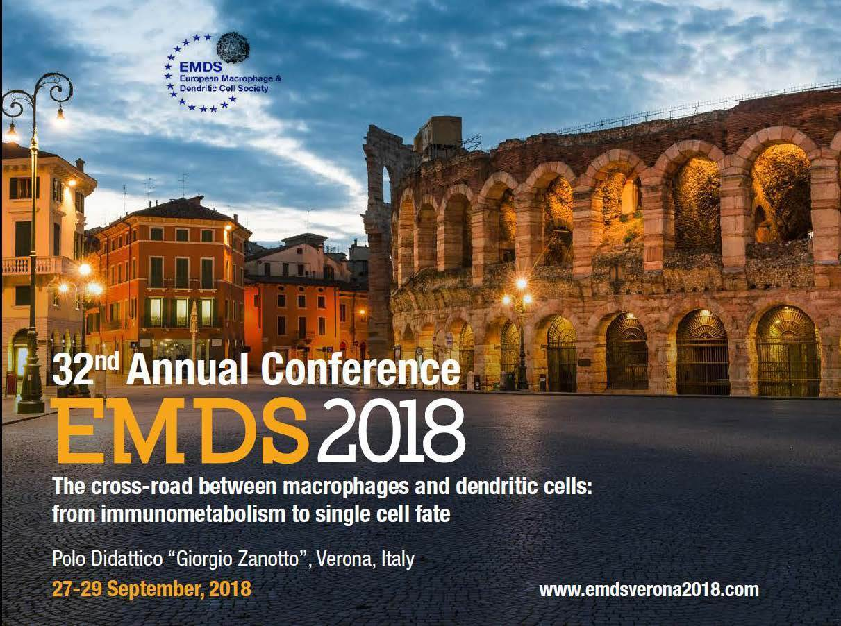 32nd-Annual-EMDS-conference-Verona-Sep.27-292018